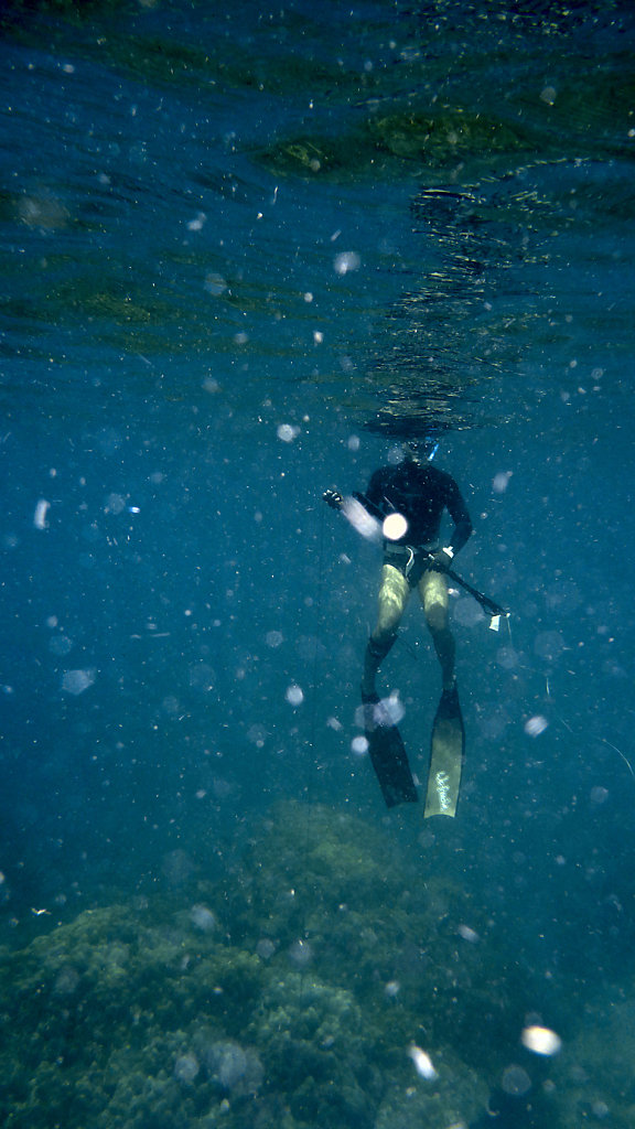 We freedive fins with Richard
